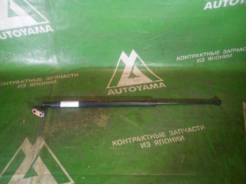 Амортизатор багажника Toyota Ractis NCP100 правый (б/у)