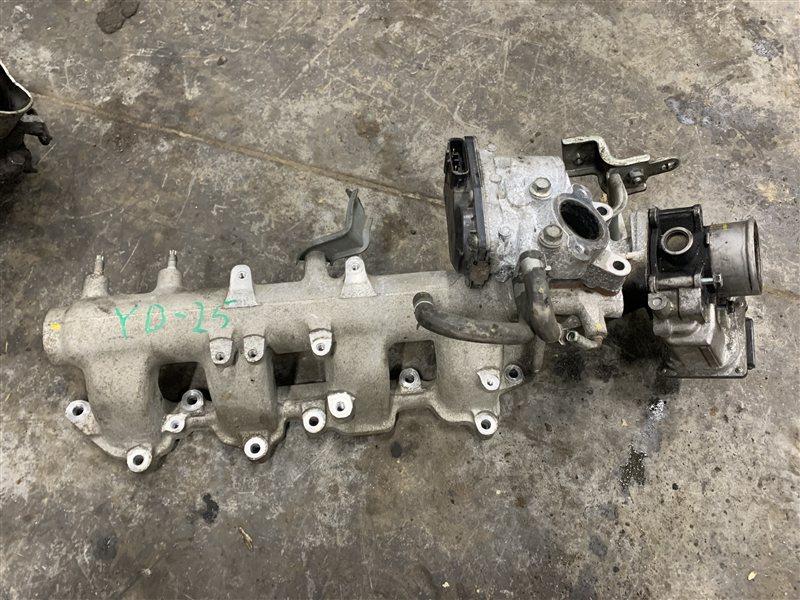 Коллектор впускной Nissan Navara D40 D40 YD25DDTI 2008 (б/у)