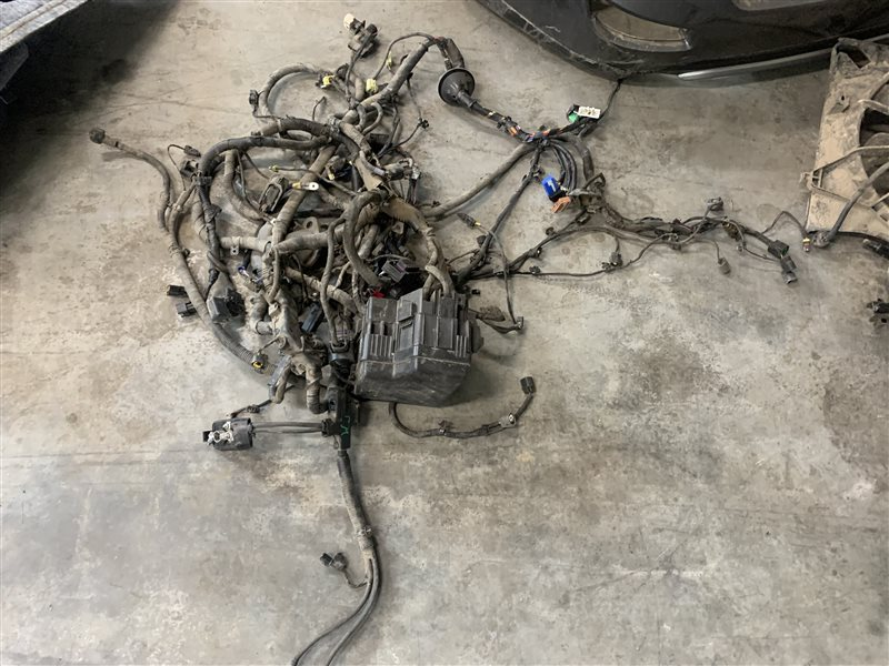 Проводка моторного отсека Hyundai Santa Fe Cm CM G4KE 2011 (б/у)
