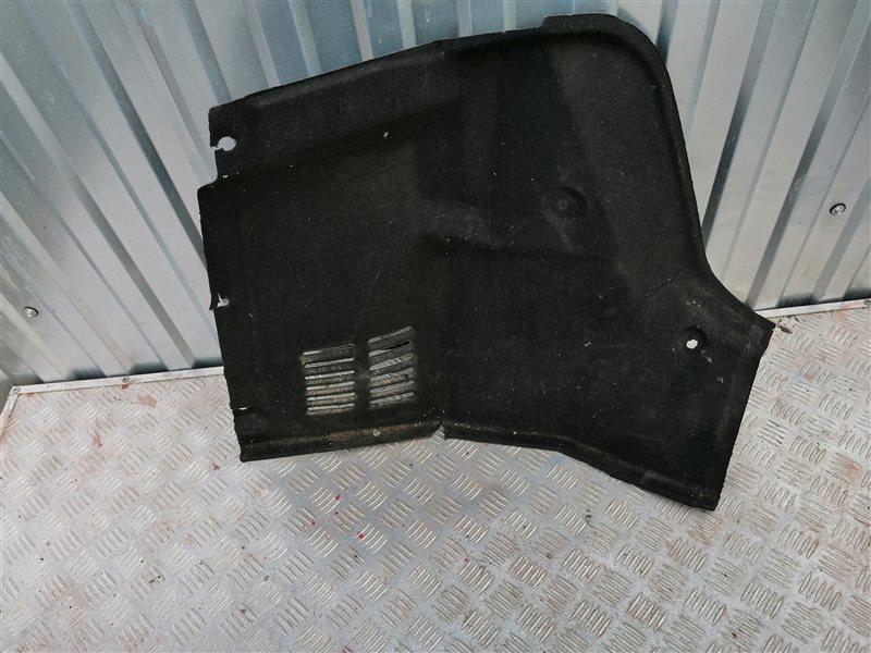 Обшивка багажника Chevrolet Aveo T250 B12D1 2008 задняя правая (б/у)