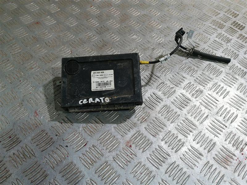 Электронный блок Kia Cerato 2 TD G4FC 2011 (б/у)