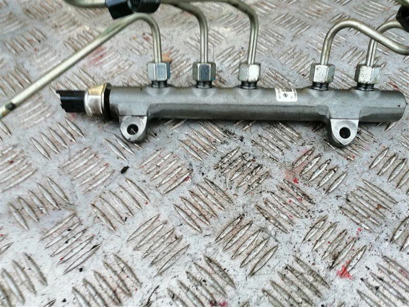 Топливная рампа Ssangyong Actyon New CK D20T 2012 (б/у)