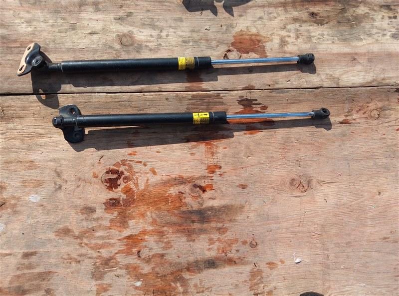 Амортизатор задней двери Lexus Ct200H ZWA10 2ZRFXE 02.2013 (б/у)