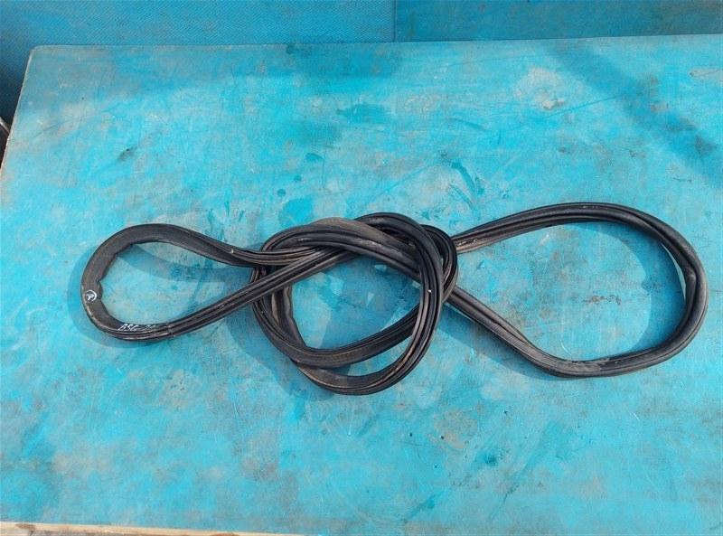 Уплотнительная резинка багажника Bmw X6M E71 S63B44A 09.2011 (б/у)