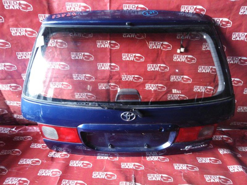 Дверь задняя Toyota Ipsum SXM15-0030079 3S-2286029 1997 (б/у)