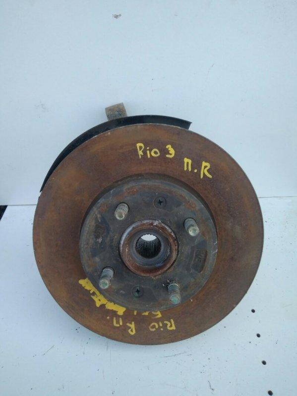 Кулак поворотный Kia Rio 3 QB G4FC 2013 передний правый (б/у)