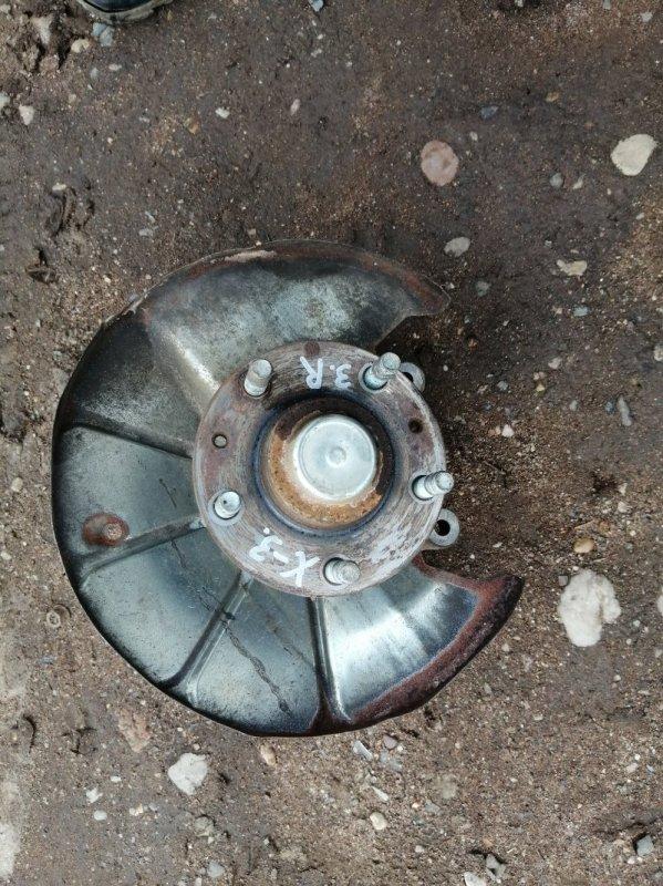 Кулак поворотный Haima 3 HM483Q-A 2011 задний правый (б/у)