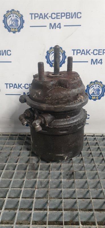 Энергоаккумулятор Renault Magnum Dxi 480 D12 480 VOLVO (б/у)