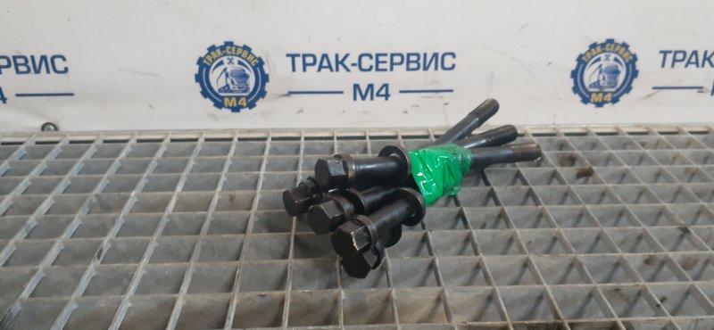 Шпильки, болты головки блока двигателя Renault Magnum E-Tech 440 MACK 2004 (б/у)