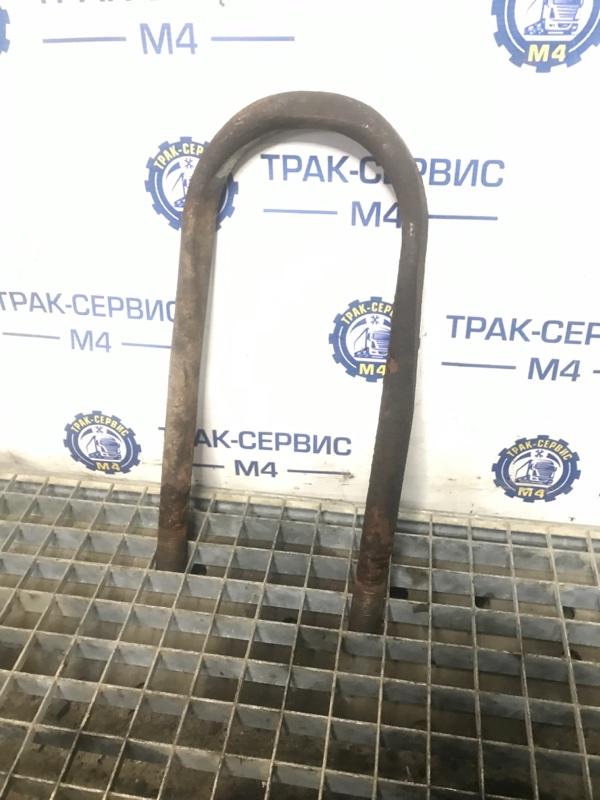 Стремянка рессоры Renault Magnum (б/у)