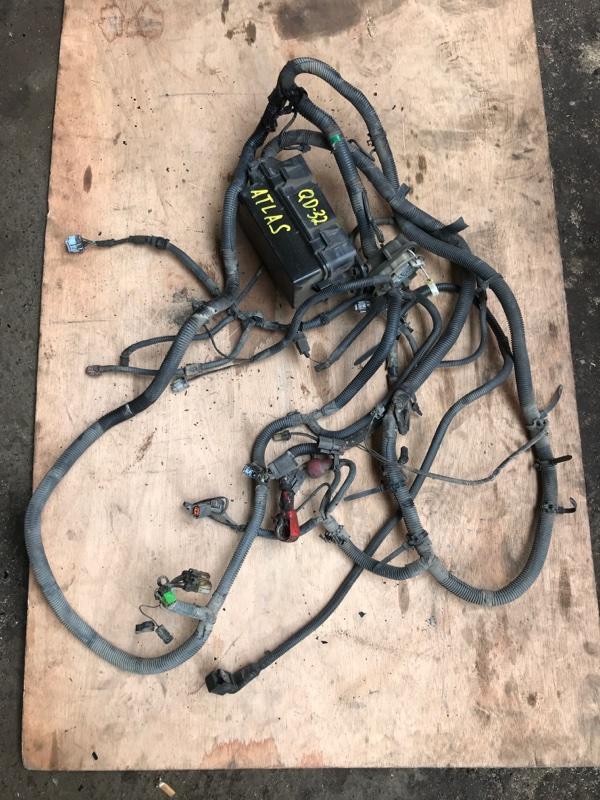 Электропроводка Nissan Atlas R2F23 QD32 1999 (б/у)