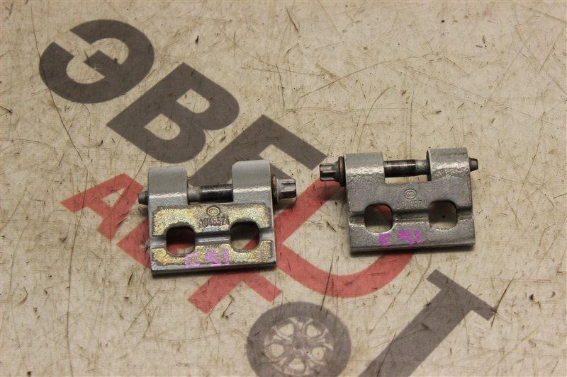 Петля двери Bmw 3-Series 320I Touring E91 N46B20B 2008 задняя