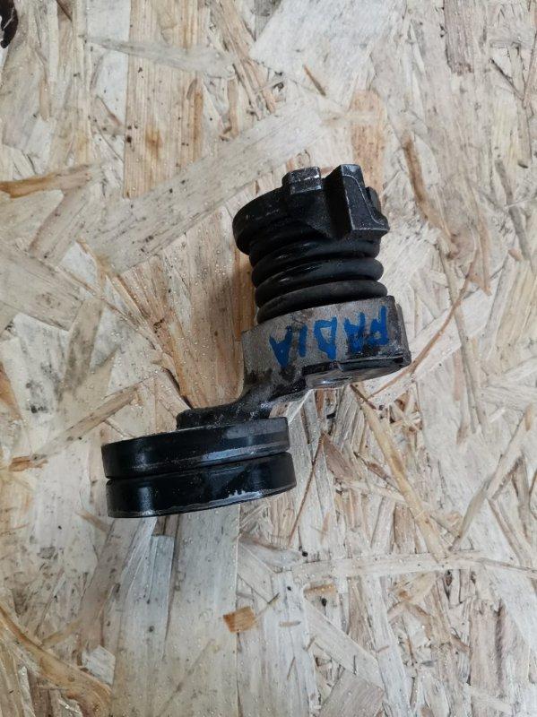 Натяжитель генератора Skoda Fabia 2 BZG236599 2009 (б/у)