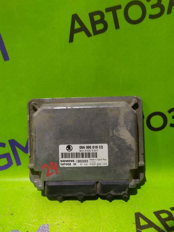 Блок управления двигателем Skoda Octavia A4 AKL 2005 (б/у)