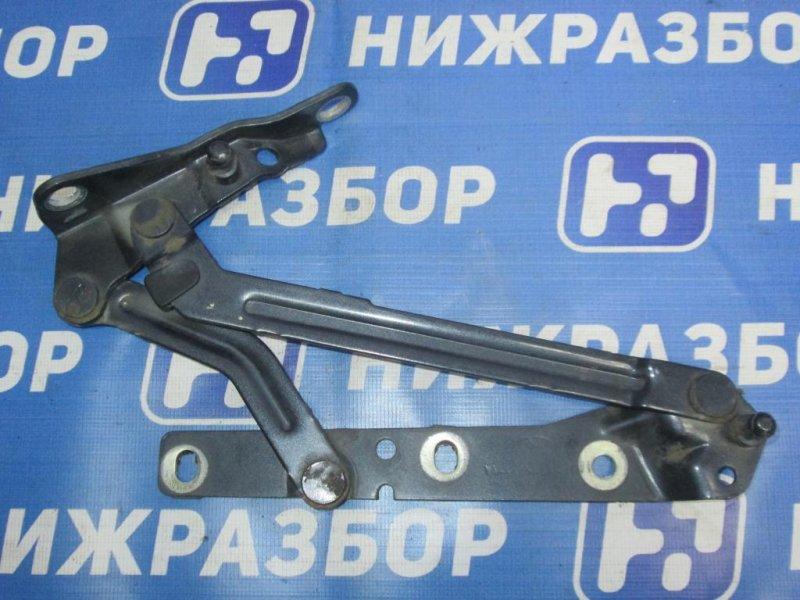 Петля багажника Ford Focus 2 СЕДАН 1.8 (QQDB) 2007 (б/у)