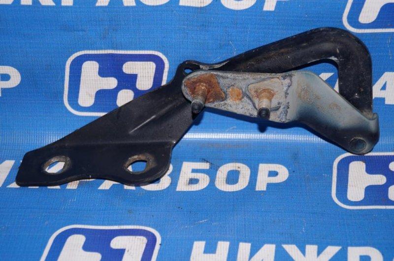 Петля капота Ford Focus 2 1.8 (QQDB) 2007 левая (б/у)