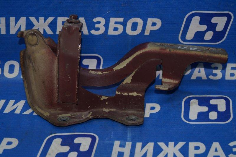 Петля капота Chevrolet Captiva C100 3.2 10HMC 2008 правая (б/у)
