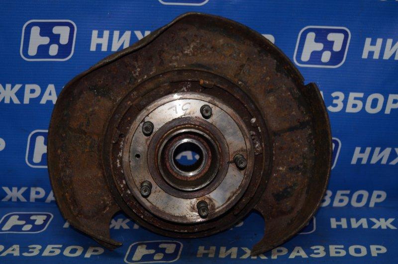 Ступица Chevrolet Captiva C100 3.2 10HMC 2008 задняя левая (б/у)