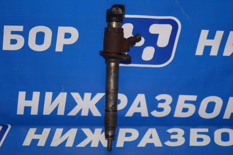 Форсунка дизельная Land Rover Discovery 3 L319 2.7 TDI (276DT) 2008 (б/у)
