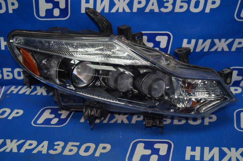 Фара Nissan Murano Z51 2008 правая (б/у)