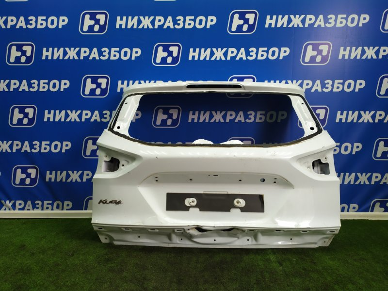 Дверь багажника Ford Kuga 2 задняя (б/у)