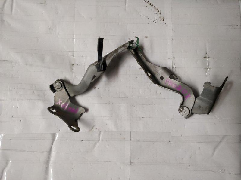 Петля капота Toyota Probox NCP50 2NZ-FE правая