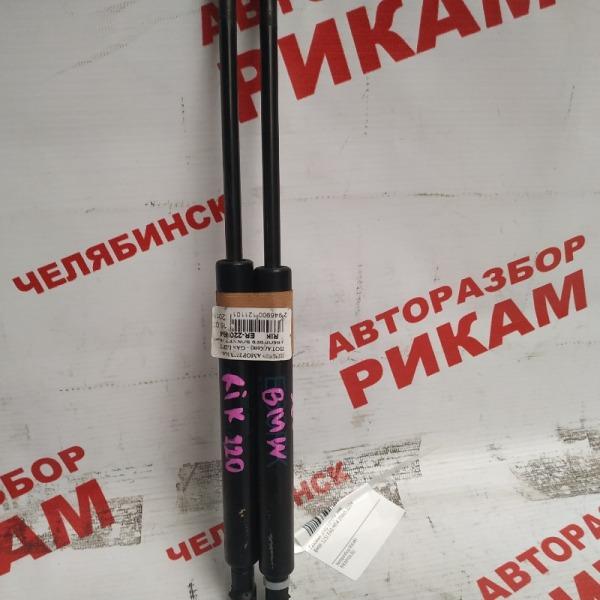 Амортизатор капота Bmw 5-Series E60 M54B25 2004
