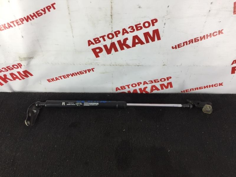 Газовый упор двери багажника Toyota Ipsum ACM20 задний правый