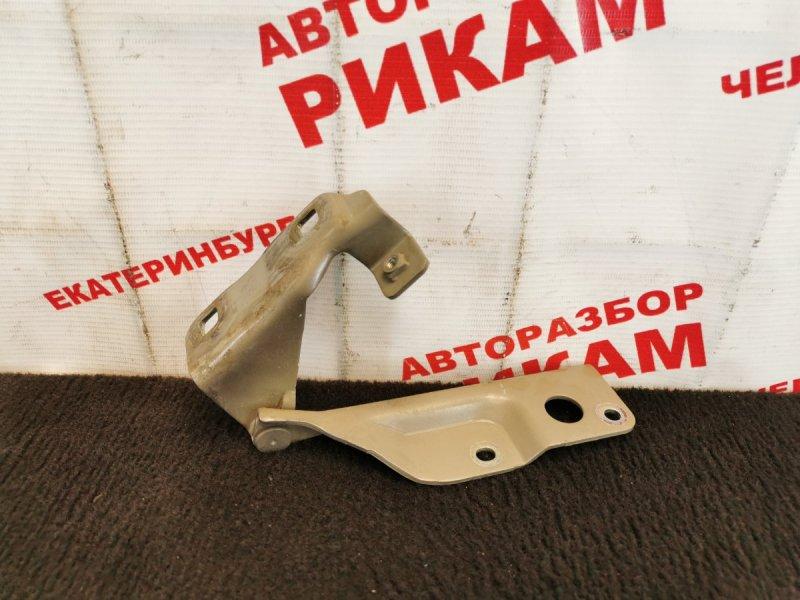Петля капота Nissan Almera N16 QG18DE 2004 передняя правая