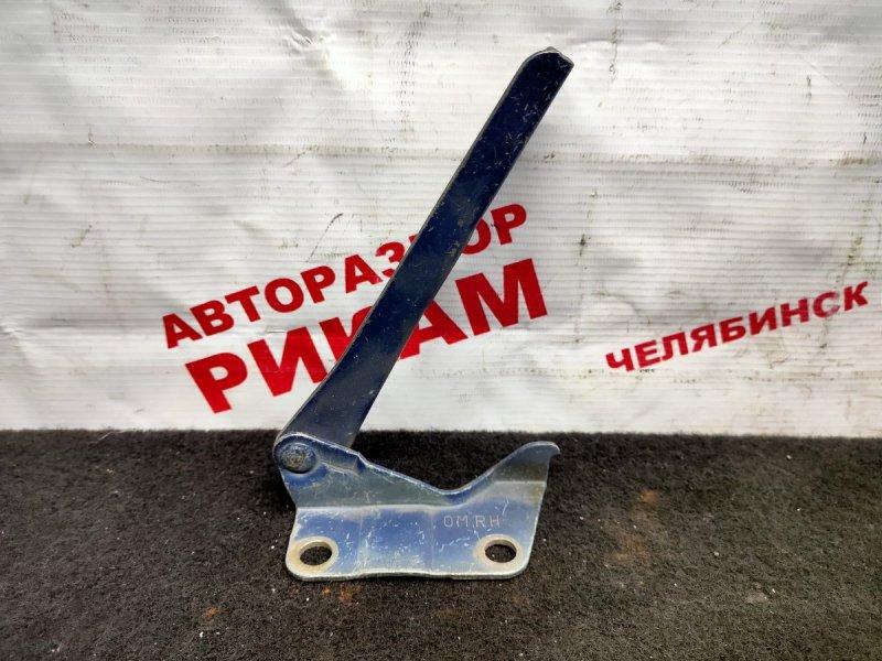 Петля капота Nissan Pulsar FN15 правая