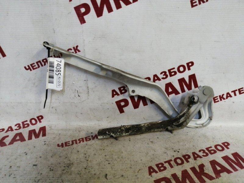 Петля капота Peugeot 207 WC EP6C 2012 правая
