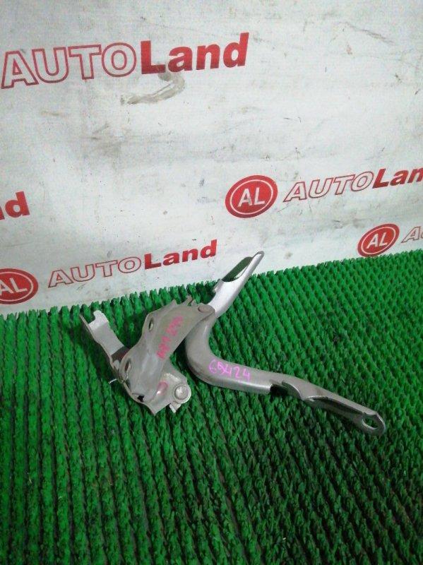 Петля капота Toyota Allion AZT240 1AZ FSE