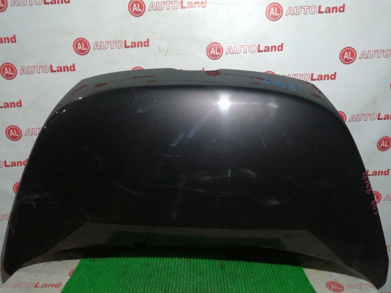 Капот Honda Stepwagon RG3