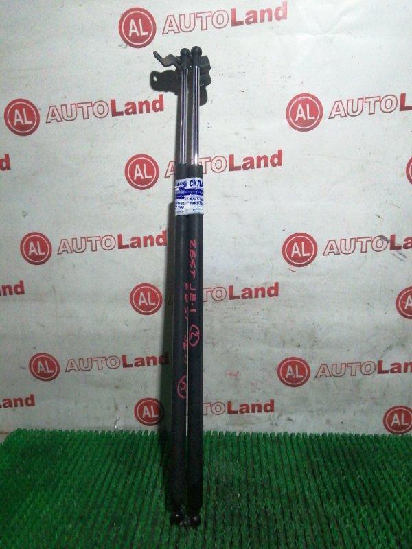 Амортизатор 5-й двери Honda Zest JE1