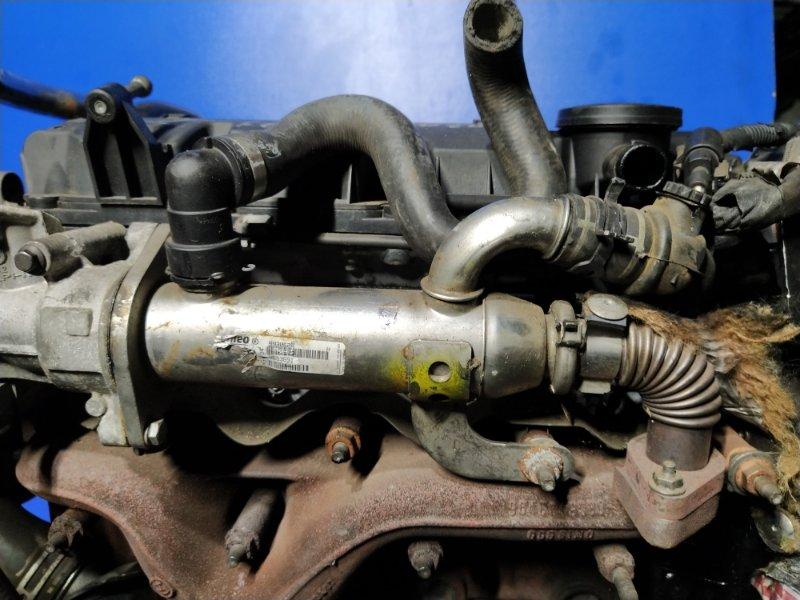 Радиатор (теплообменник) egr Ford Focus 2 2004-2008 (б/у)