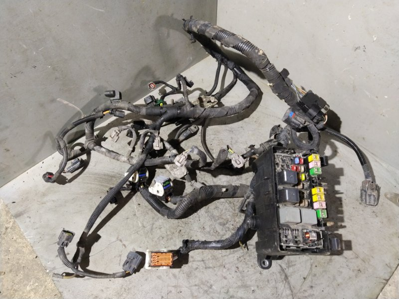 Проводка моторного отсека Ford Transit (2006-) (б/у)