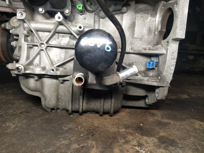 Радиатор масляный Ford Focus 3 (2011>) ХЭТЧБЕК 1.6L IQDB 2013 (б/у)