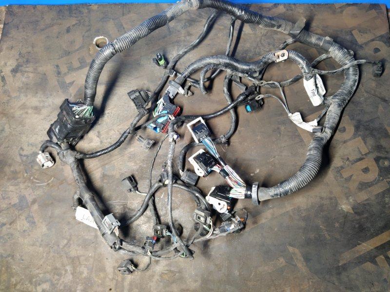 Проводка моторного отсека Ford Focus 2 2008-2011 ХЭТЧБЕК 1.8 TDCI/KKDA 2008 (б/у)