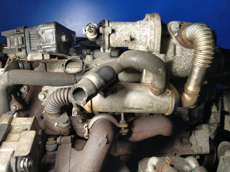 Радиатор системы egr Ford Focus 2 2008-2011 1.8 KKDA (б/у)