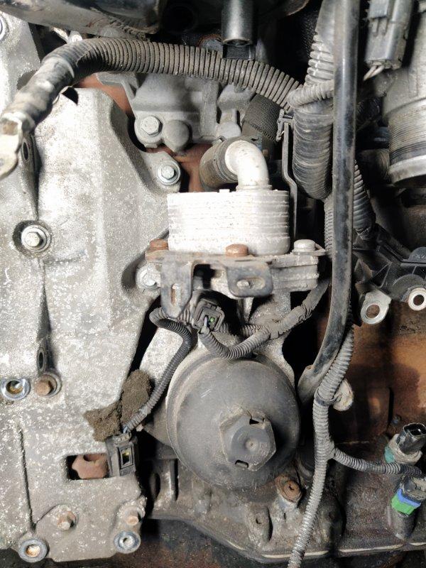 Радиатор масляный Ford Mondeo 4 (2007-2014) ХЭТЧБЕК 2.2L DURATORQ-TDCI (175PS) 2008 (б/у)