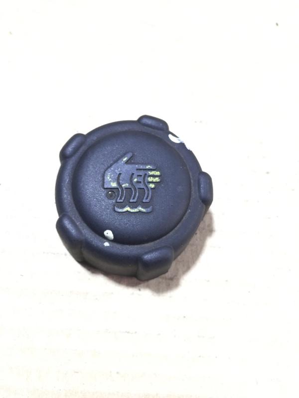 Крышка расширительного бачка Opel Vivaro 1.9 D 2007 (б/у)