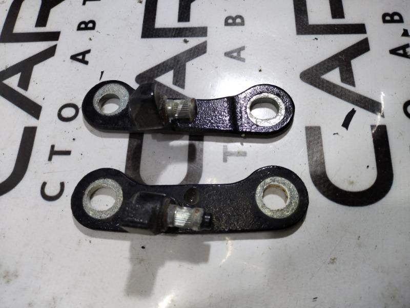 Петля двери Opel Signum 2.2 YH 2006 задняя правая (б/у)