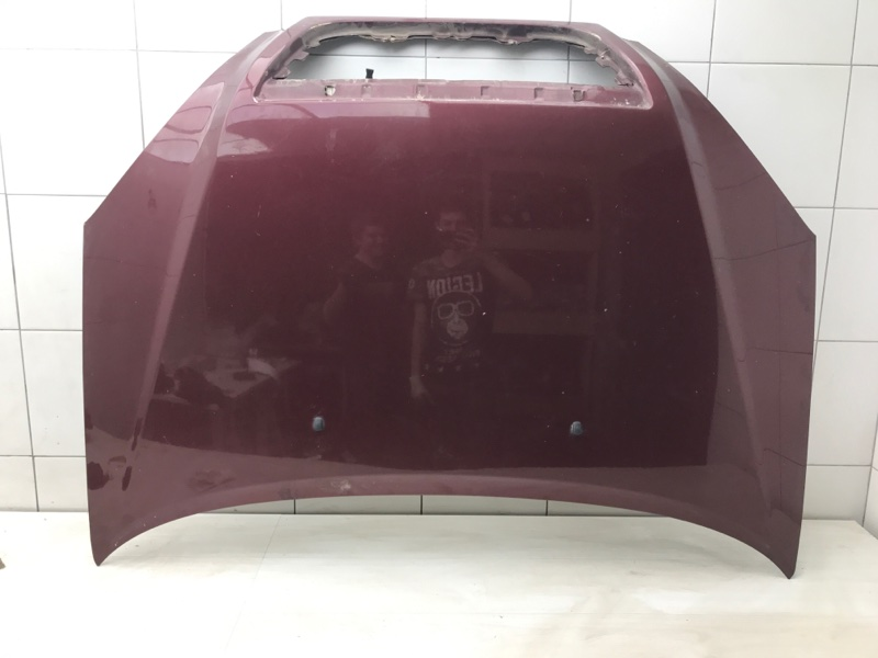 Капот Vortex Tingo T11 SQR481FC 2011 (б/у)