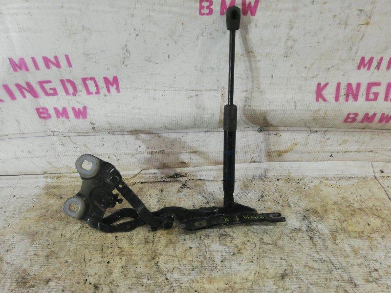 Петля капота Mini Countryman R60 N18B16A 2013 правая (б/у)