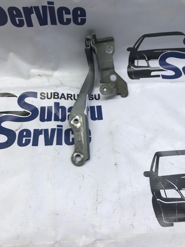 Петля капота Subaru Outback BR9 EJ253 2009 левая