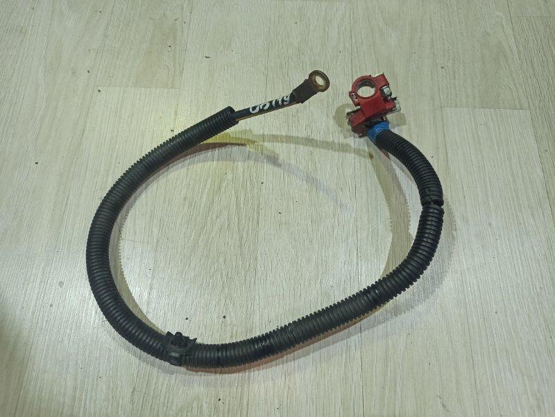 Проводка (клемма аккумулятора) Nissan Primera P12 ЛИФТБЕК QG18DE 2006 (б/у)