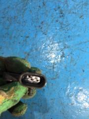 Запчасть датчик абсолютного давления Daewoo Matiz